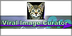 Viral Image Curator Pro